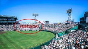 野球の雑学 アルプススタンド2